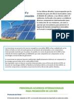 recursos energéticos renovables Política Mundial