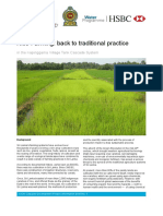 Rice farming-back to traditional practice.pdf
