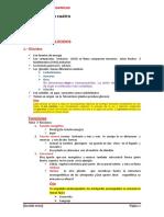 Biomolecuas Copia