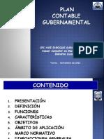 05 Plan Contable Gubernamental Estructura y Clasificacion - 2013
