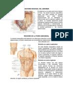Anatomía regional.docx