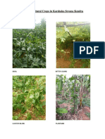 Some of the Agricultural Crops in Karshaka Sevana Kendra