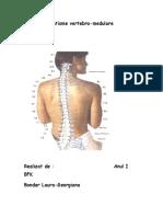 Traumatisme vertebro medulare