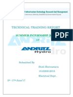 ANDRITZ Hydro Summer Training  Report