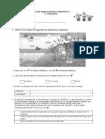 Guía ecosistema y huesos 4° básico