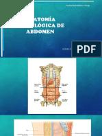 Anatomia Radiologica de Abdomen Exposicion Completa