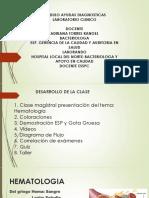 seccion-hematologia