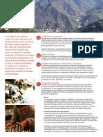 60216982-Minera-La-Granja.pdf