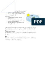 Photosynthesis and Food Webs