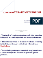 Carbohydrate Metabolism.pptx