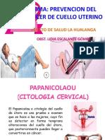 Diapositivas - Pap Ivaa