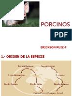 16 Porcinos 01.ppt