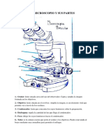 El Microscopio y Sus Partes