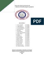 fixprint IMMUNE THROMBOCYTOPENIC PURPURA_KELOMPOK 2 (2).docx