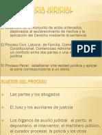 20090721-La Pericia Judicial Miguel Angel Rivera