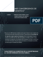 Sindromes Cancerigenos de Origen Genetico