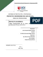P.P.F_PRINSUR (7)