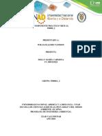 COMPONENTE PRÁCTICO VIRTUAL.pdf
