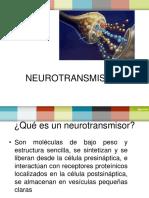 Neurotrasmisiores