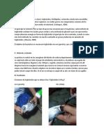 Informe de Trigliceridos Bioquimica