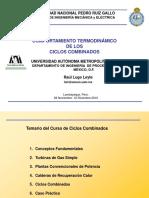 Programa Del Curso de Ciclos Combinados Perú