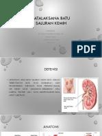 359528837-PPt-Urolithiasis.pptx