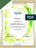 borcan.pdf