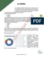 HARINA.pdf