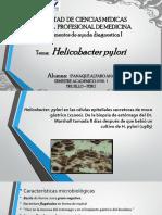 Ppt de Helicobacter Pylori