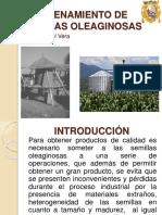 Tag2-Almacenamiento de Semillas_oleaginosas