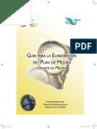 guia plan de mejora.pdf