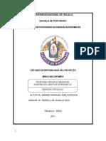 Estudio de Rentabilidad Del Proyecto - Mina Chilcapampa