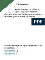 Lactogeneza
