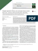 Wani-transgenesis Aplicada a Toleracia Stres Hidrico-2018