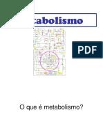 Metabolismo 2018
