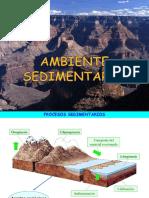 Amb Rocas Sedimentarias 1bach