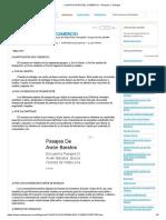 Clasificación Del Comercio - Ensayos y Trabajos