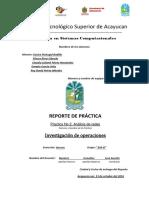Formato de Reporte de Practicas Armadillos