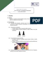PASO PRACTICO 1.pdf