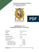 Informe 9 FII