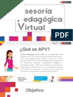 PPT APV.pdf