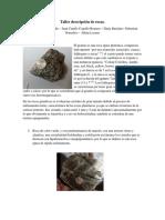Taller Descripción de Rocas