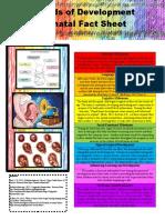 ece497 - week 2 assignment prenatal