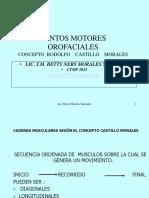 Puntos Motores Orofaciales - Castillo Morales