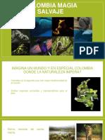 Colombia Magia Salvaje- Diapositivas