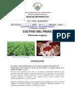 VOZAGRARIA Nª 06-2013_ CULTIVO DE FRIJOL.pdf