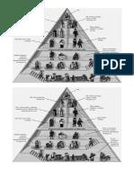 Material Fotocopiable Piramide Social Privilegiados y No Privilegiados