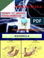 Teoría 11 Anatomía Humana - Región Submandibular Dr. Johnny Fernando Quiñones Jáuregui