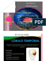 DIA POSITIVAS TEMPORAL.pdf