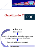 Genetica Do Cancer